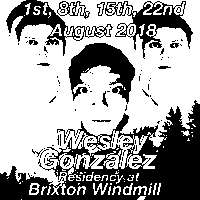 Wesley Gonzalez, Warm Brains, Clingfilm  at Windmill Brixton promotional image