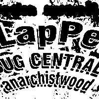 Slapper / Bug Central / anarchistwood at New Cross Inn promotional image