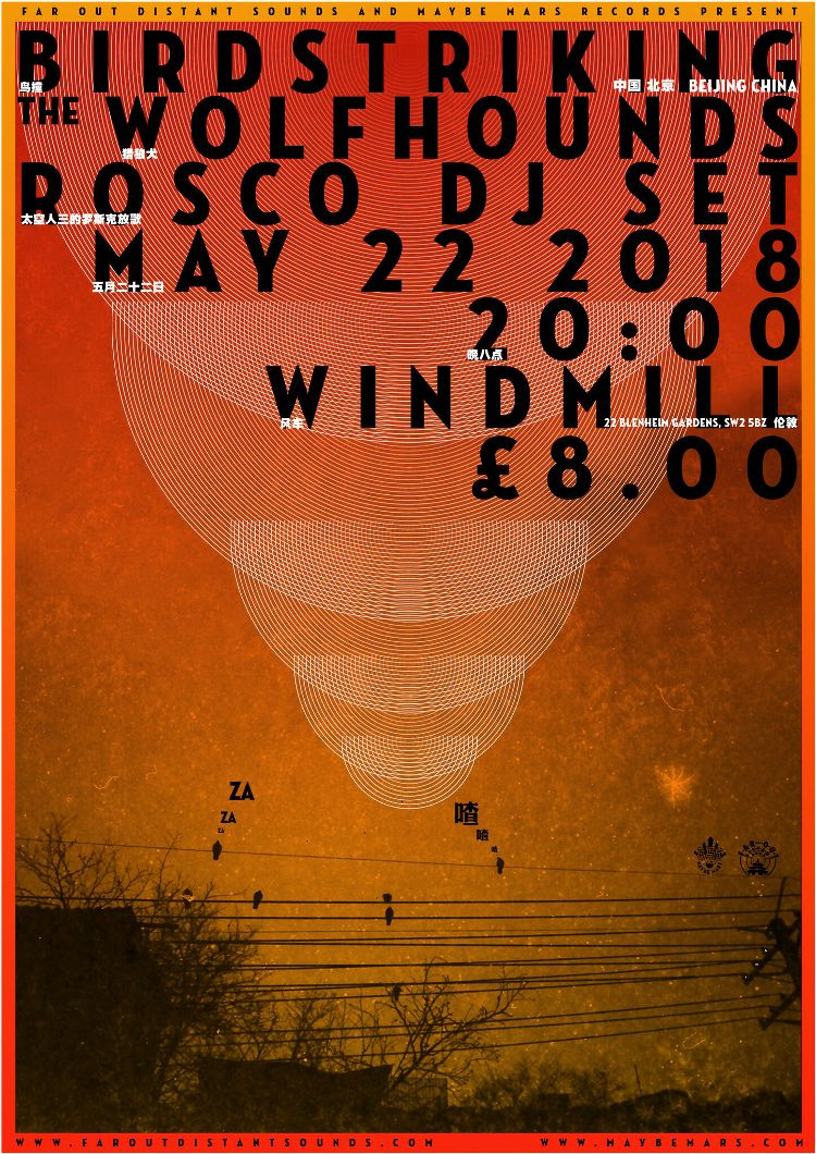 Birdstriking (China) + The Wolfhounds + Rosco DJ set  at Windmill Brixton promotional image