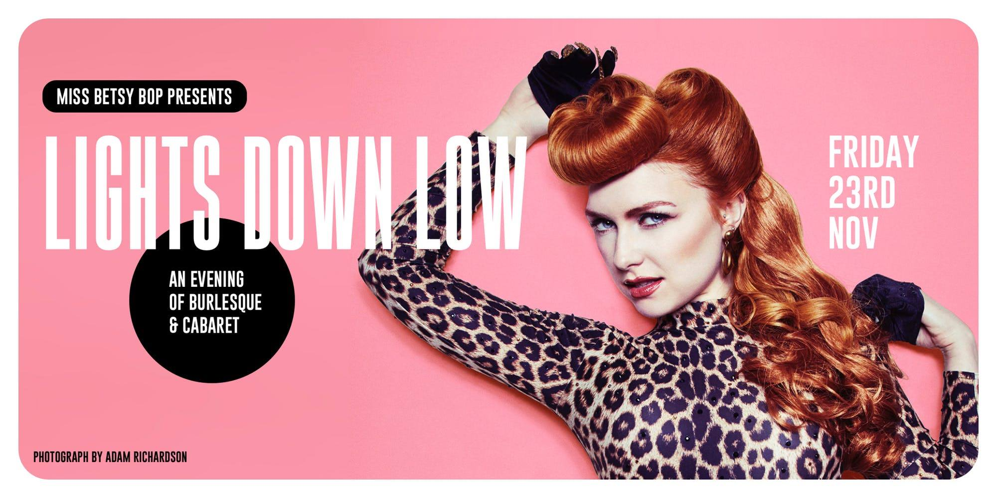 LIGHTS DOWN LOW - An evening of Burlesque & Caberet at The Fiddler's Elbow promotional image