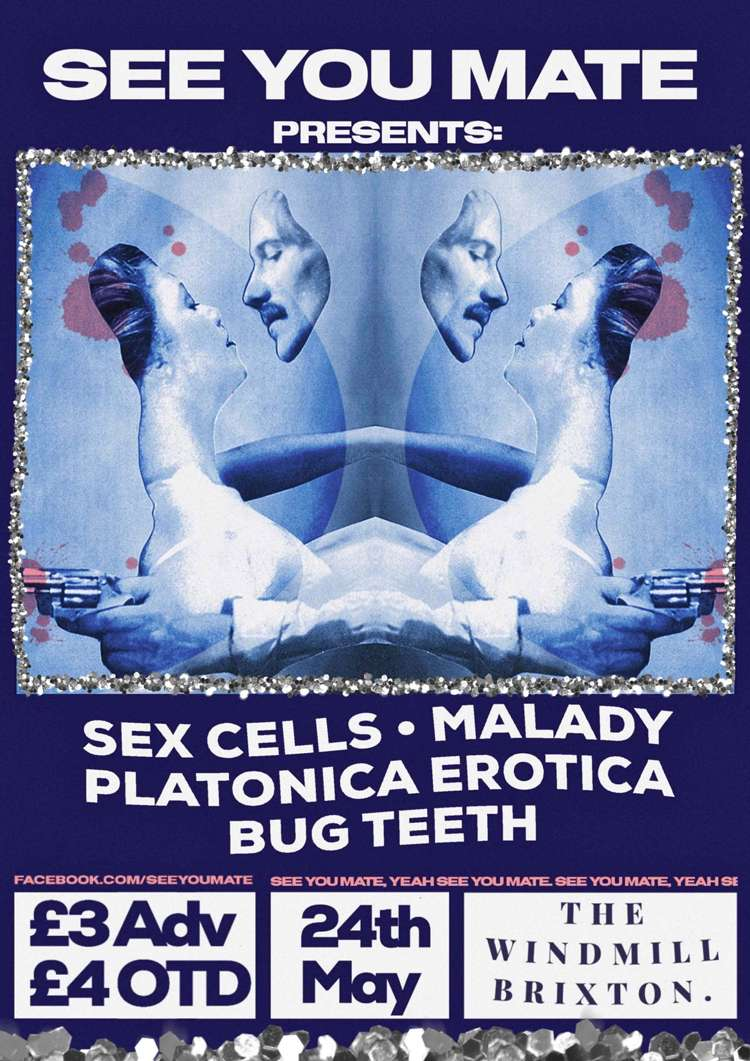 Sex Cells, Malady, Platonica Erotica, Bug Teeth  at Windmill Brixton promotional image