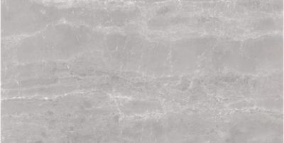 gray, white porcelain Silver Pearl Polished