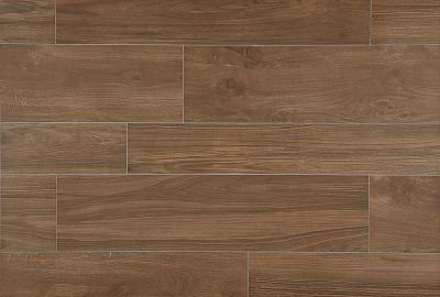 brown, tan porcelain Timberland Forest Park by daltile