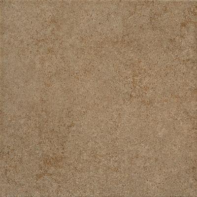 brown, tan ceramic Parkway Brown by daltile