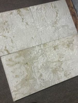tan, white marble Vanilla Cream Brushed Marble Tile