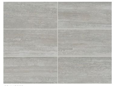 gray, tan porcelain Silverstone Exquisite by daltile