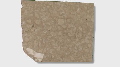 tan marble Shellstone