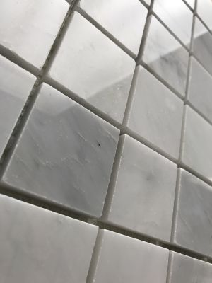 gray, white marble Calacatta Carrara Polished 2x2 Square Mosaic Tile by c-line marble and granite