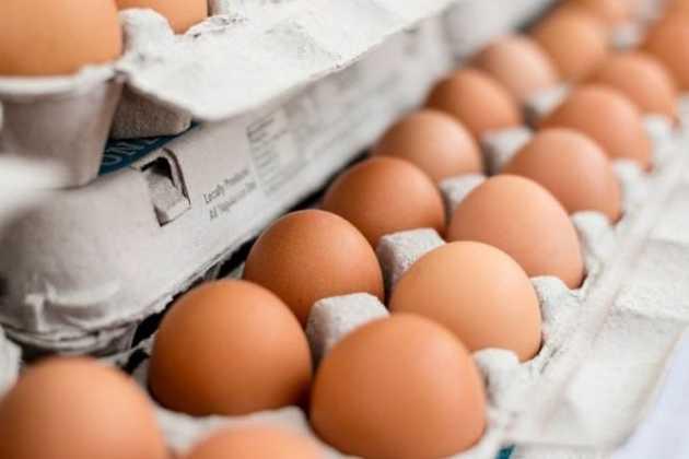 South Korea eggs
