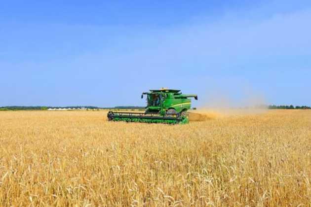 Ukraine grain harvest