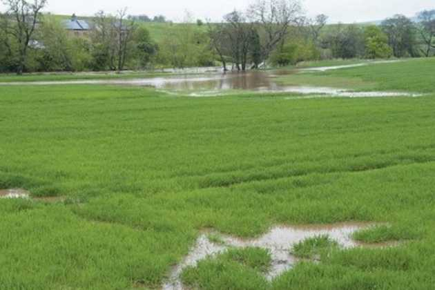 UK farmland flood