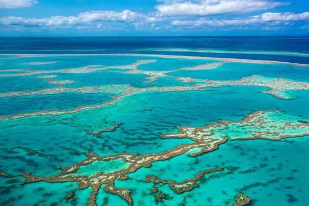 Coral Sea Marine Park
