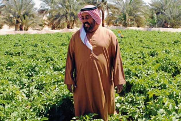 Abu Dhabi farmers