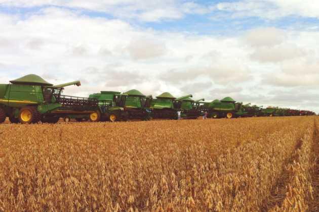 Brazil harvest