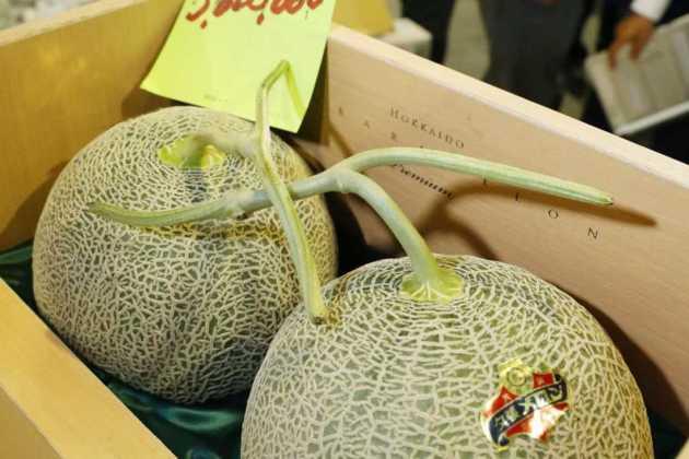 Hokkaido melons fetch record