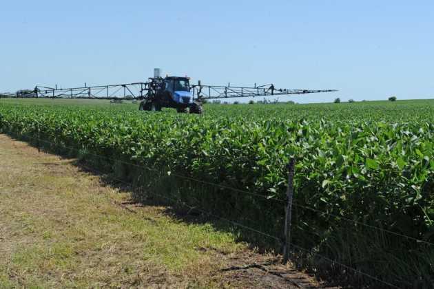 Uruguay soybean grower