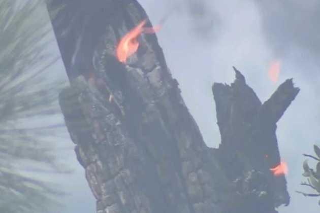 Walker Fire
