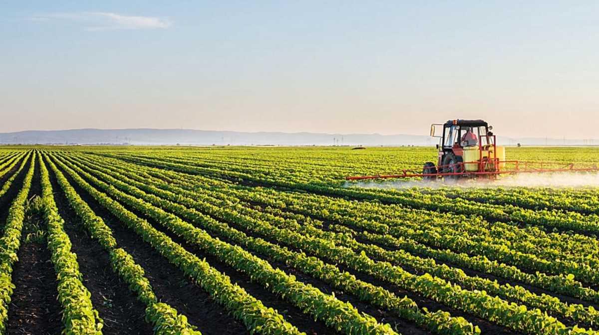 Arkansas farms