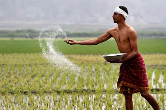 Farmers in India