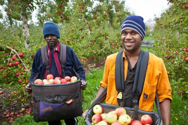 New Zealand foreign workers