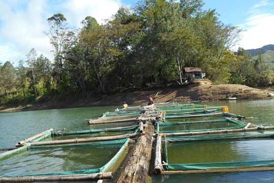Australia aquaculture