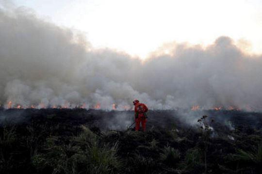 Mongolia fire