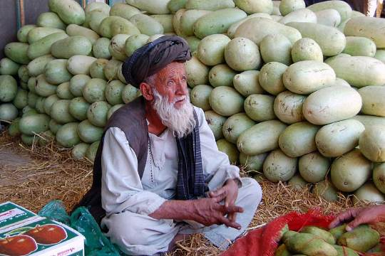 Pakistan fruit
