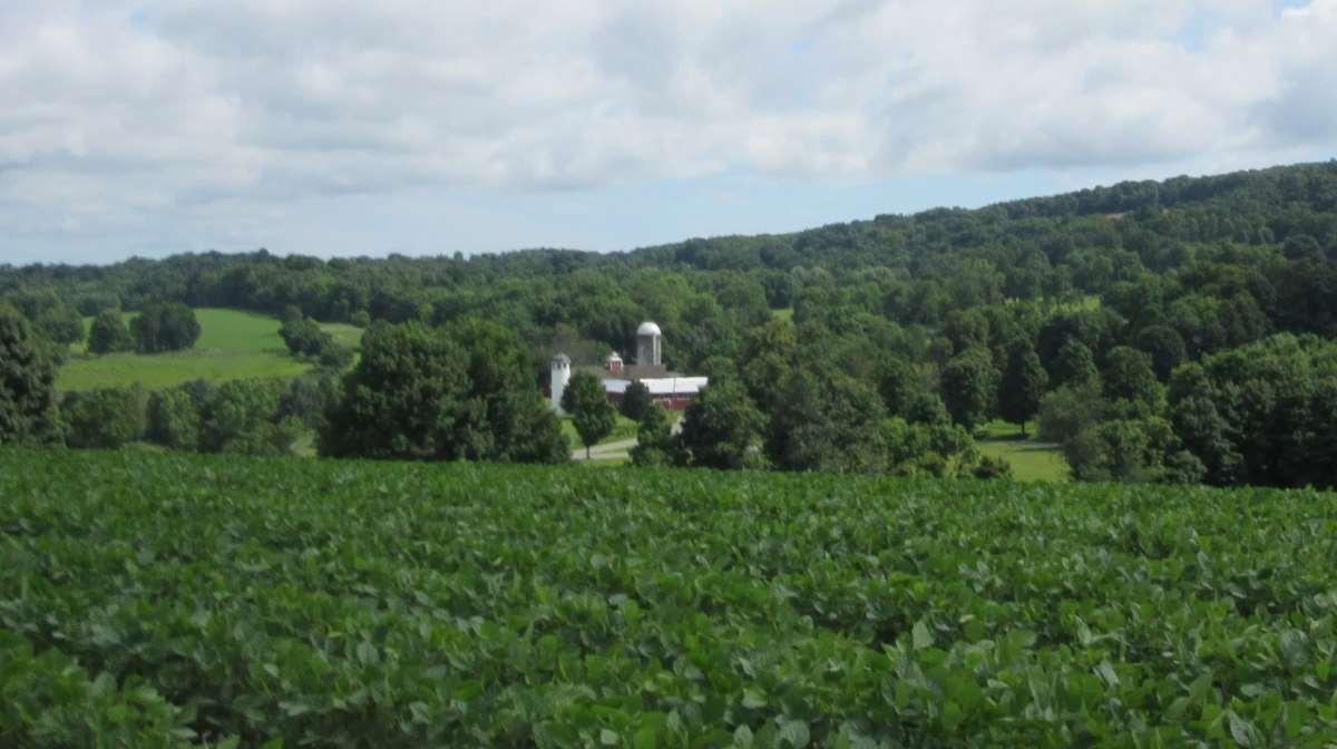 Dutchess Land Conservancy