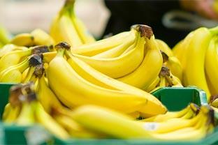 Philippine banana