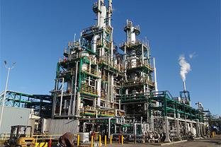 Evergreen Oil
