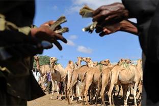 Somalia government