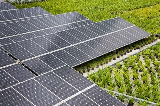 Bolivia electricity
