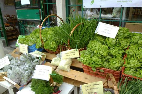 Bulgaria farmers market