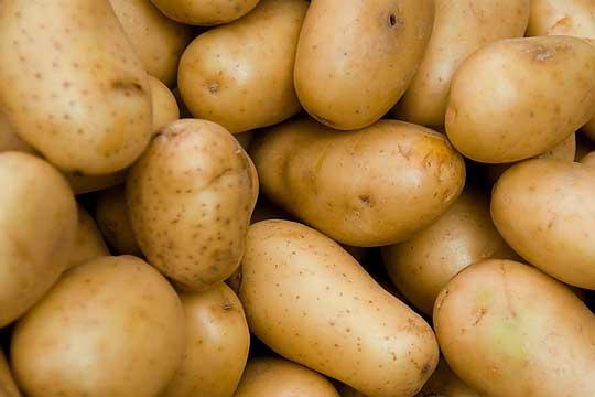 Romania potato