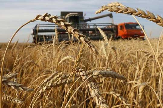 Russia grain