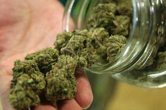 Germany marijuana