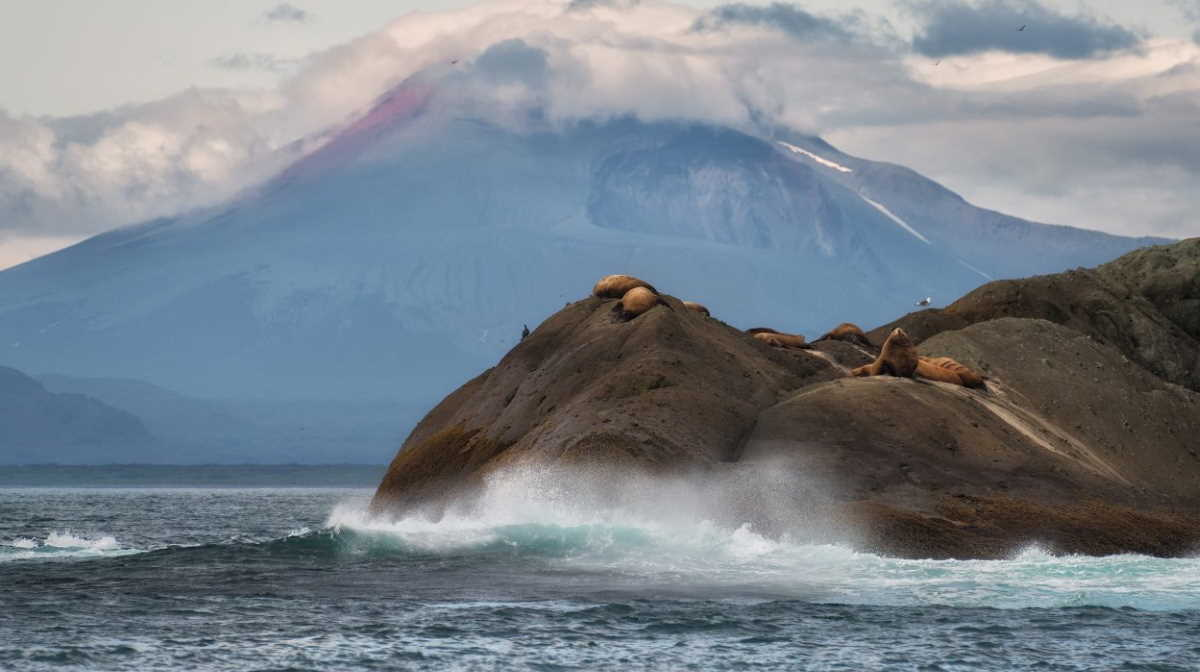 Kamchatka coast