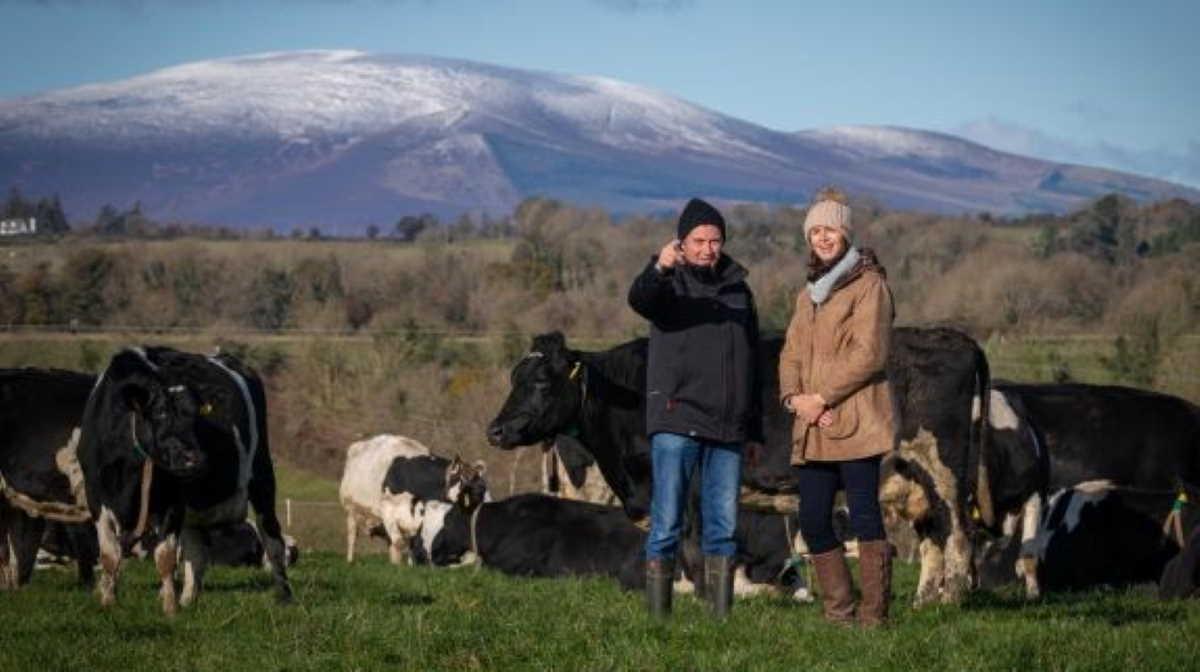 Ireland farmer