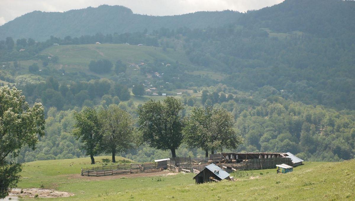Buzau County, Vrancea