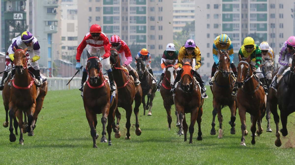 Hainan horse racing