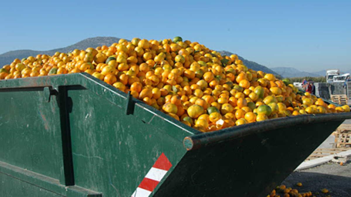 U.S. food waste