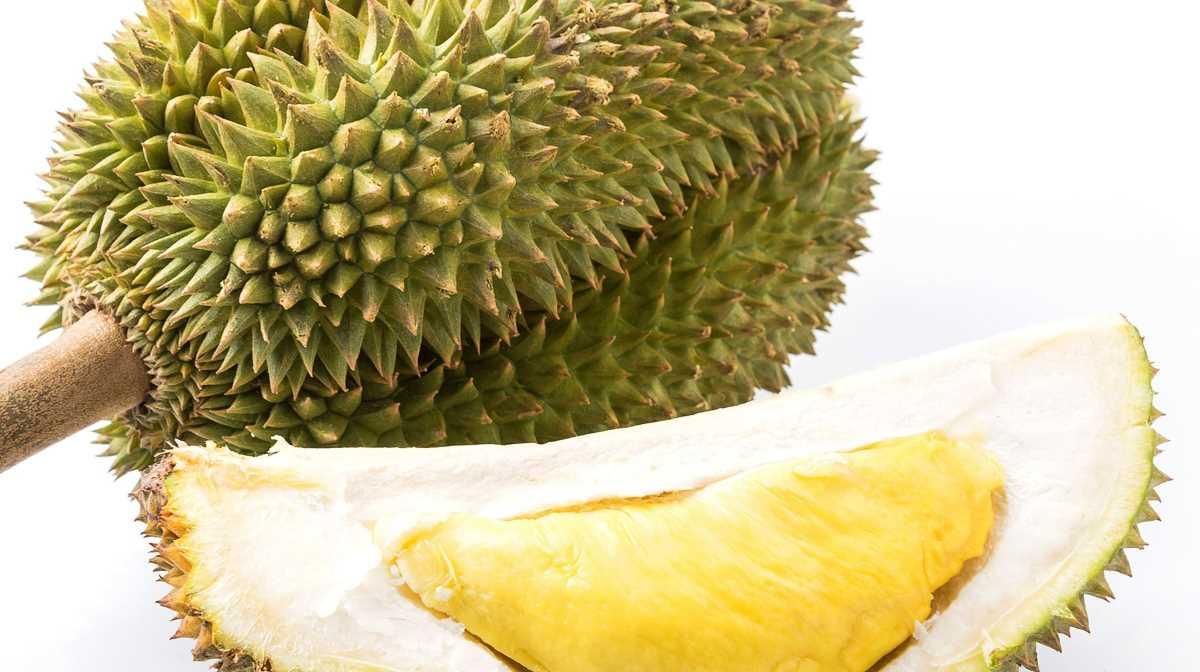 Thai durian