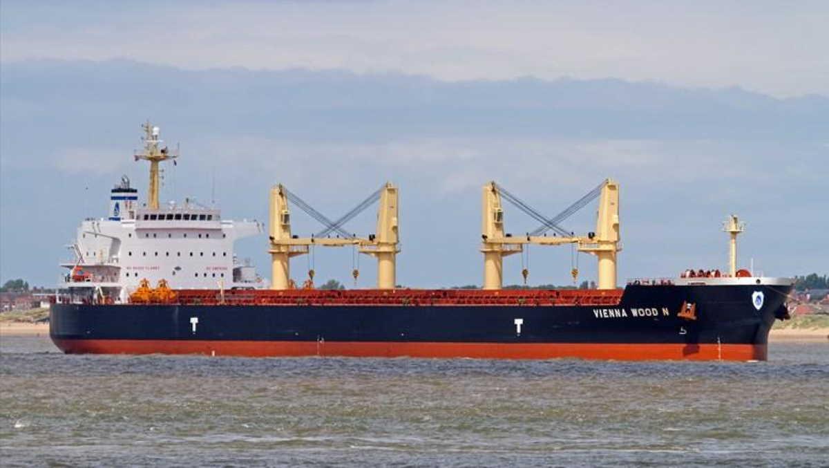 Bulk carrier Vienna Wood N