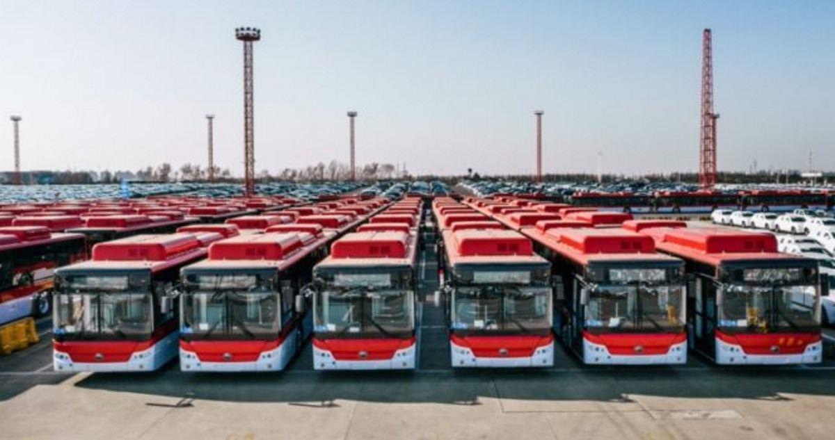 Chile's mass transit buses