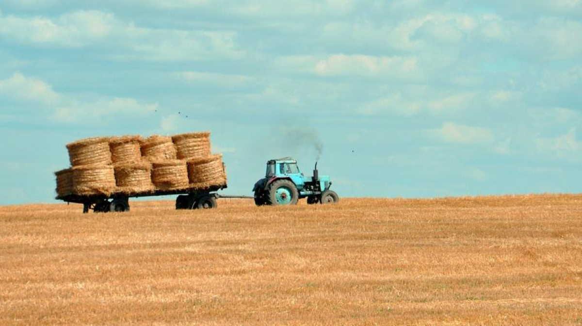 Farmers in Montana