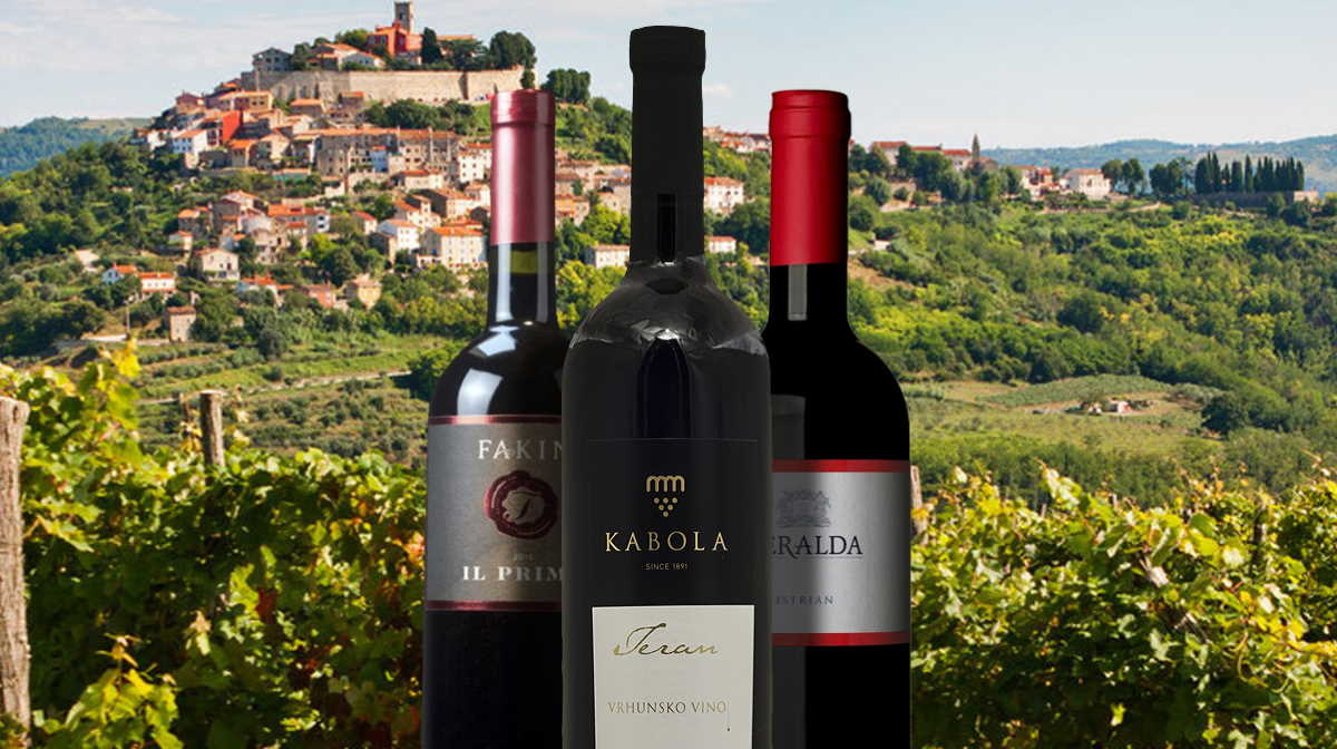 Slovenia Teran wine
