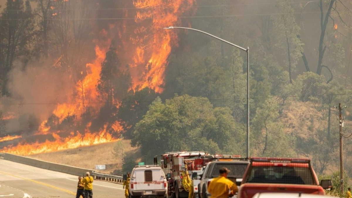 Wildfire Los Angeles
