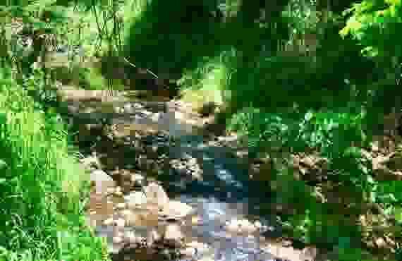 KipapaStream
