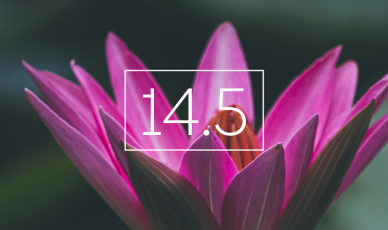 iOS 14.5: A Brave New World for Mobile Growth