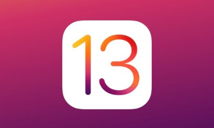 Number 13 on purple background